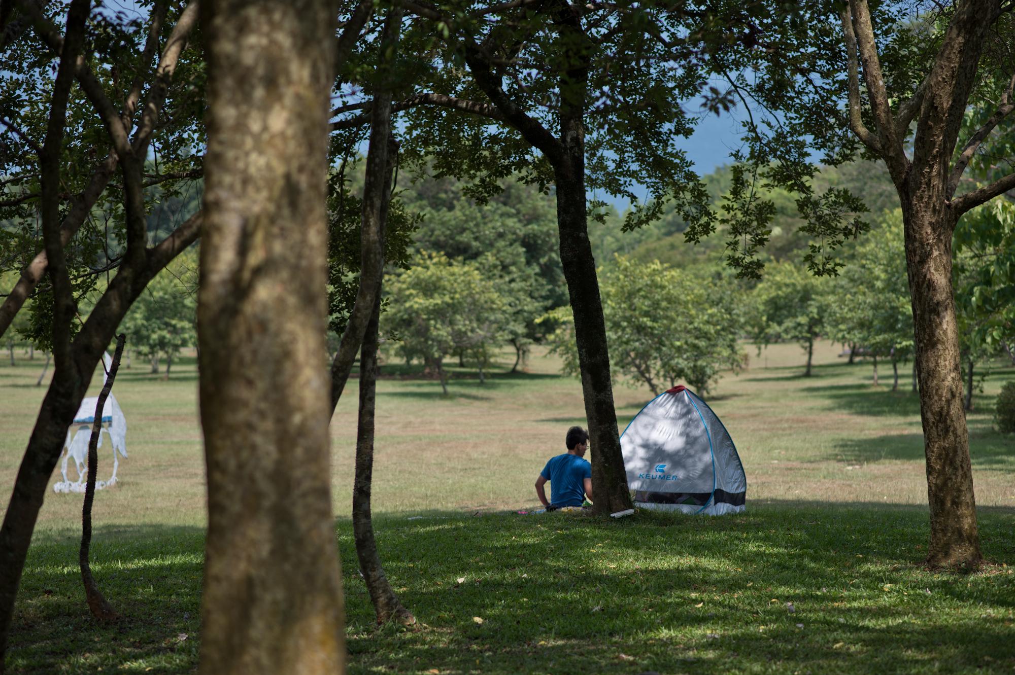 一頂小帳棚搭設於暨南大學的校園。南投埔里桃米