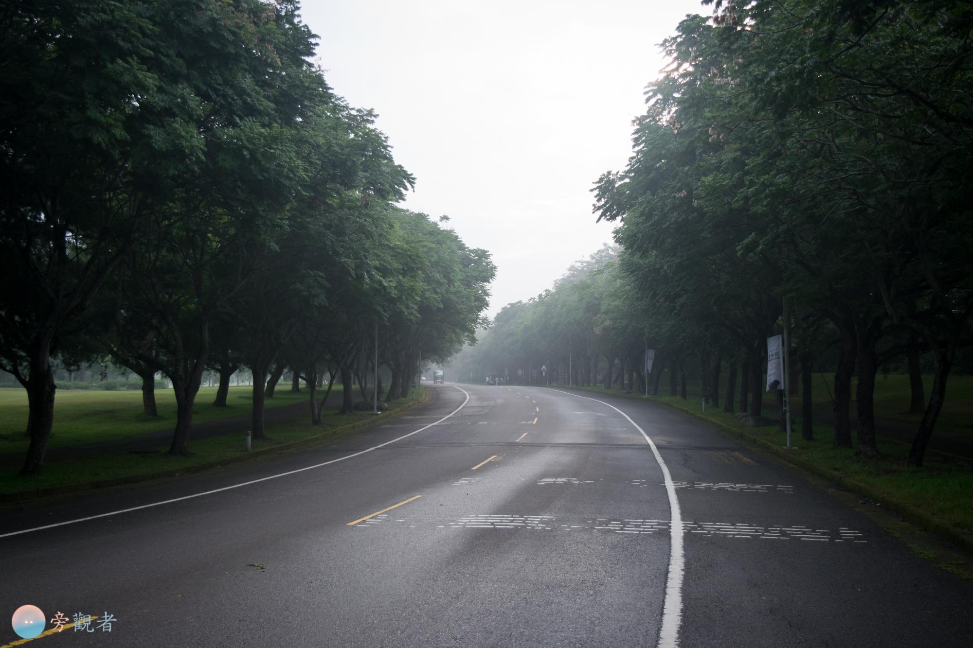 暨南大學校園道路。南投埔里南村