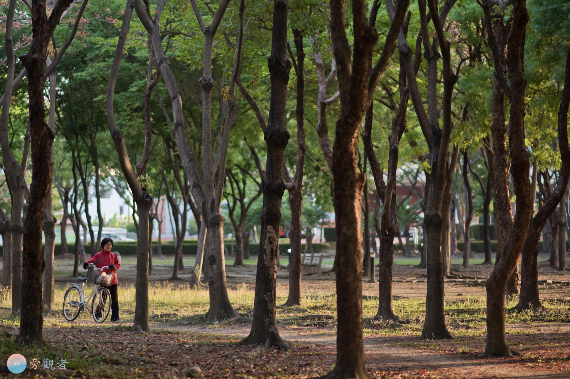 早晨的環保運動公園公園。雲林斗六。2018/4/9。