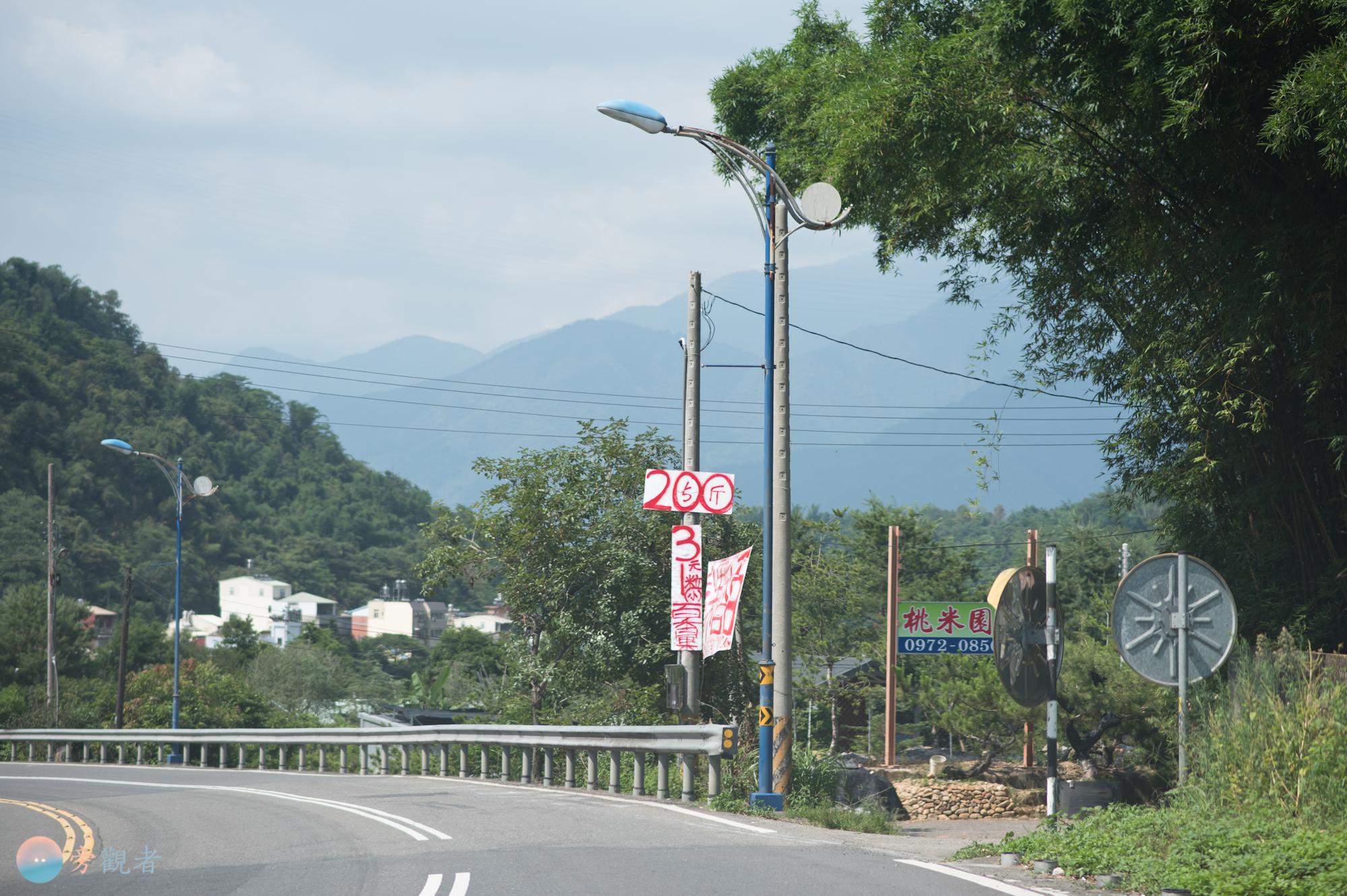 日月潭連外道路21號省道公路旁的電線桿被鄰近商家掛置銷售廣告牌。南投埔里桃米