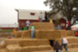 Climb some hay its a blast!