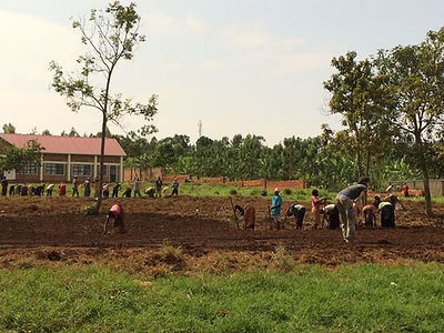 Planting a new garden at the orphan school in Rwanda, complete with drip irrigation. A first!