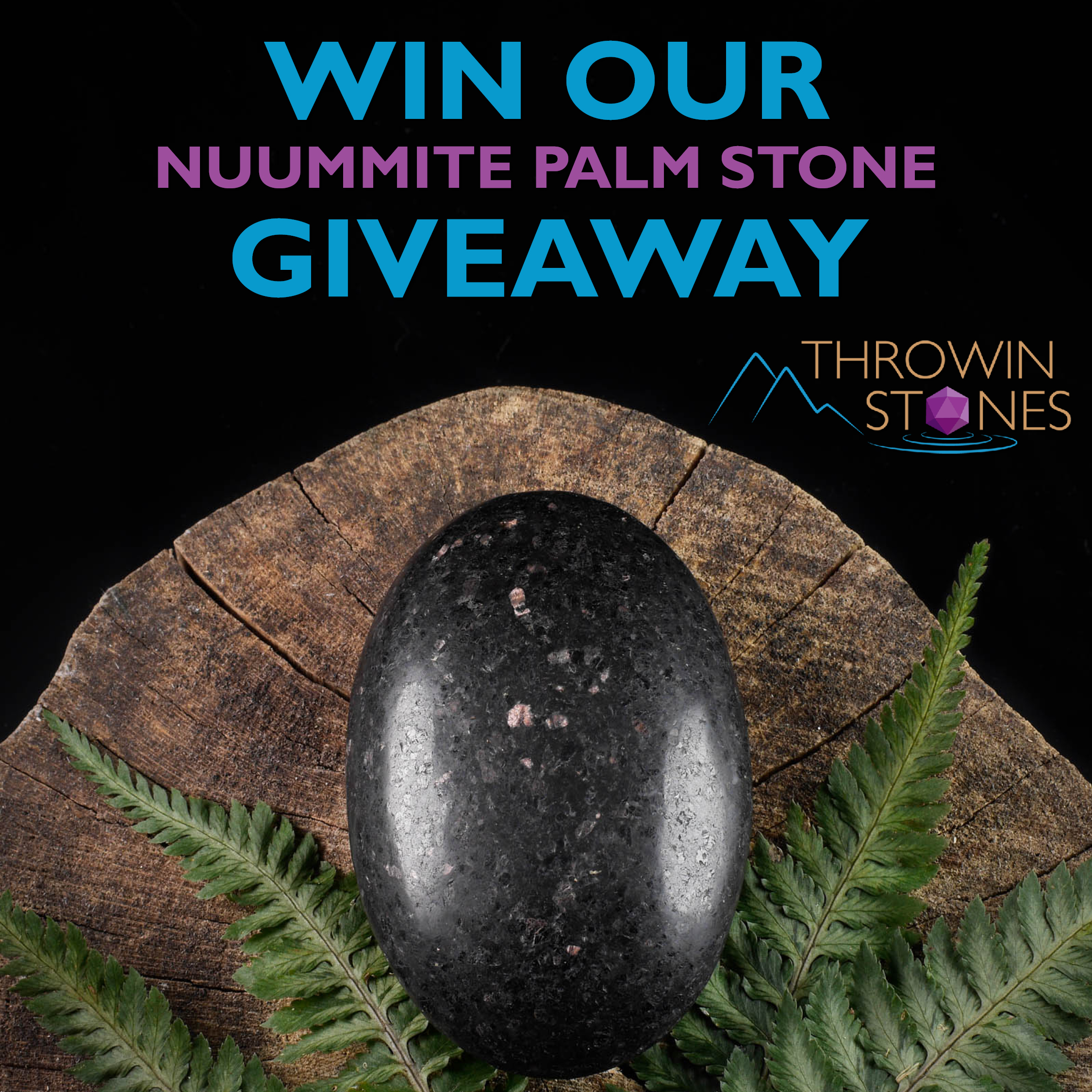 Nuummite Palm Giveaway