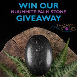 Nuummite Palm Giveaway