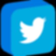 if_social_media_isometric_6-twitter_3529