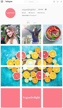 VeganDelight Instagram Billboard