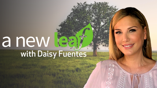 A New Leaf with Daisy Fuentes