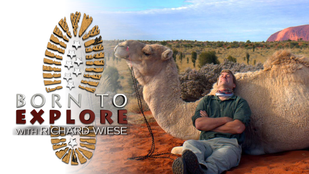 Born to Explore with Richard Wiese