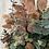 Thumbnail: Autumnal Eucalyptus Bunch
