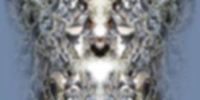 hellblau-weißes Longshirt TAIMIREK mit künstlerischem Stoffdruck