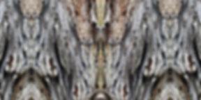 anthrazit-braun-buntes Longshirt DEYNARI mit künstlerischem Stoffdruck