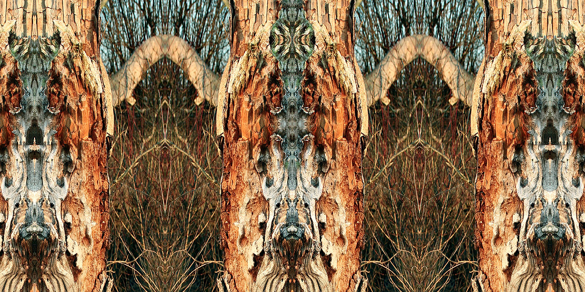 braun-buntes Longshirt KYELIE mit künstlerischem Stoffdruck