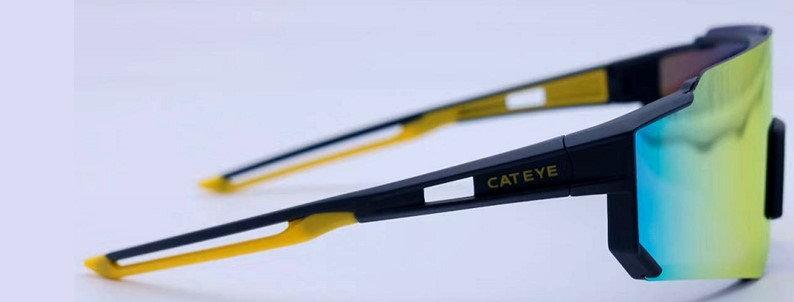 A.R 偏光眼鏡 II (寶麗萊鏡片)