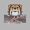 bulldog-logo Auto Detailing.png