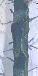 DFMW-Detail-7.jpg