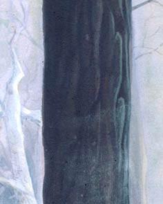 DFMW-Detail-8.jpg