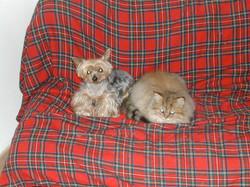 Kyiu + Mina2005.jpg