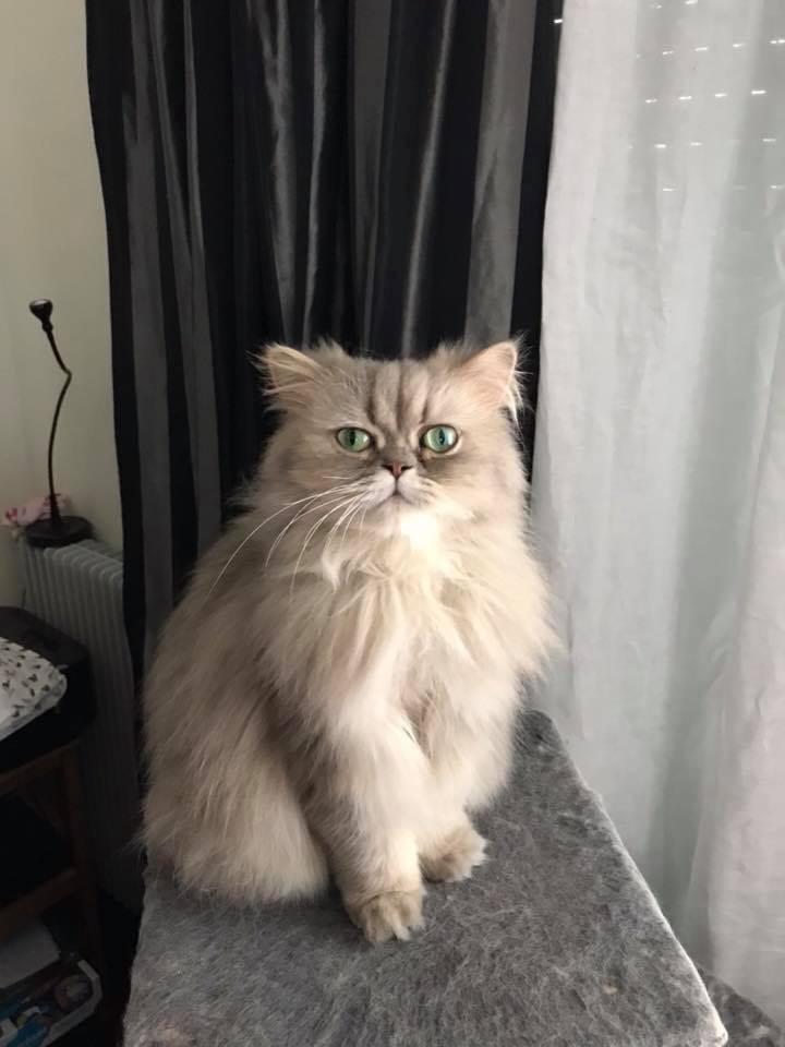 Lénoa, 3 ans
