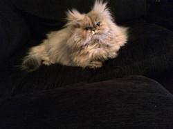 Lili-Rose, 2 ans