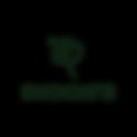 logos para web 800x800-02.png