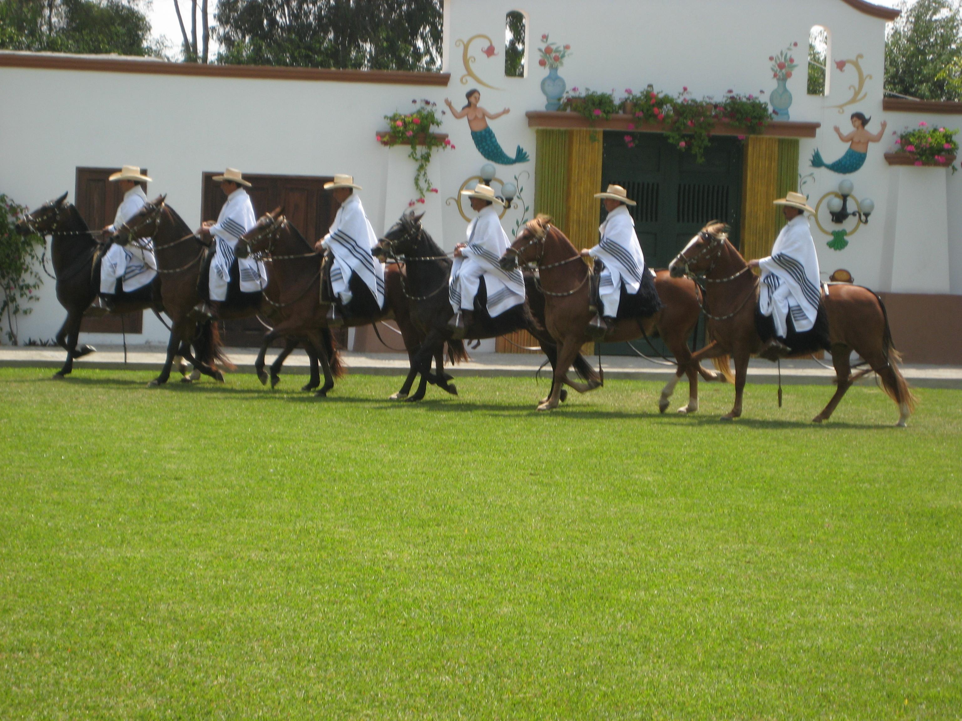 Peru (14).JPG