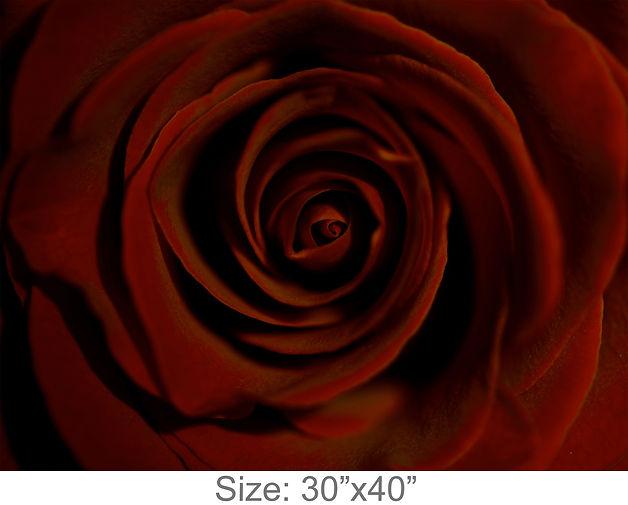 MC52_30x40.jpg
