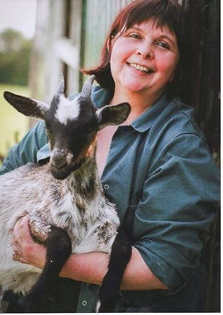 ferme des sureaux ardenne belge chèvre de Lorraine