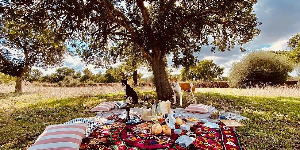 PicNic Brunch with PicNicDeal