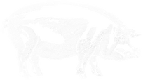 Spitfire-Logo-v43-pig-rgb-white.png