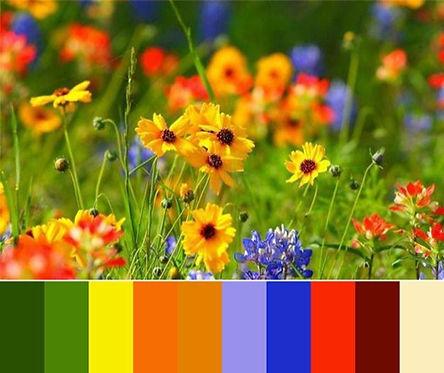 alchemy&color_Lisa.jpg