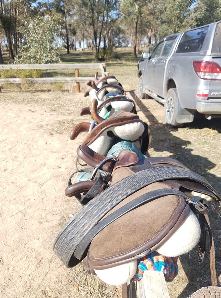 Our side saddles at a pony club rally day.