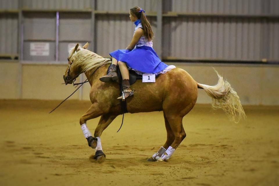Side saddle reining student Mikki.