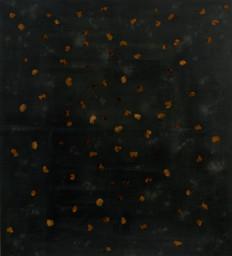 Untitled, 2018,  Rust, fower petals, acrylic on canvas  165 x 150 cm