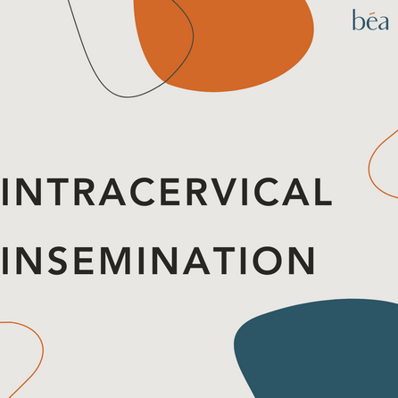 Intracervical insemination - ICI