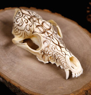 Decorated Coyote Skull