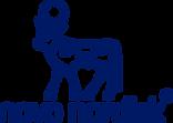 nn_logo_rgb_blue_small (1).png
