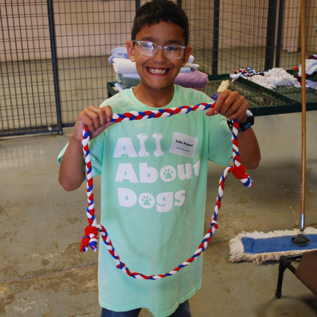 All About Dogs Camp - Making dog toys out of old t-shirts