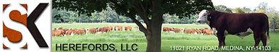 SK Herefords, LLC Logo