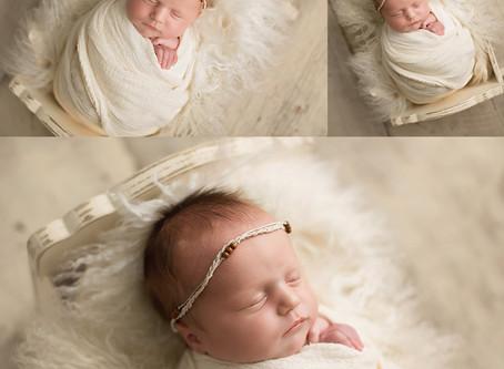 Cora - Studio Newborn Session - Cincinnati, Northern Kentucky