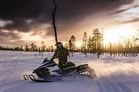 Snow Mobile Safari