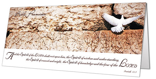 Dove at the Western Wall
