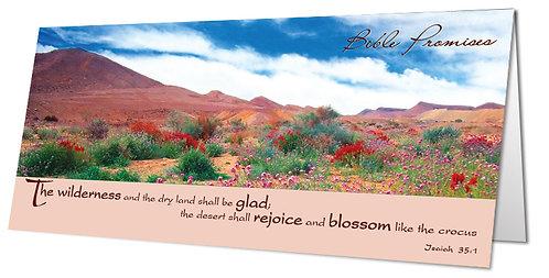 Flowering Desert