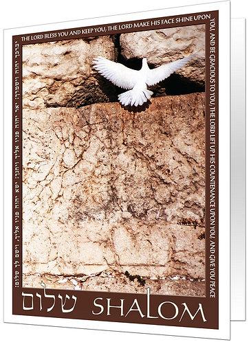 Shalom - White Dove
