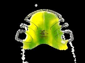 Zahnspange grün