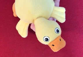 Video: Children tell stories with the adorablel CrocoDuck, by VariPets