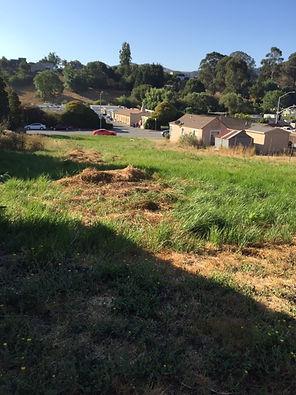 Appian Way 4 back view.JPG