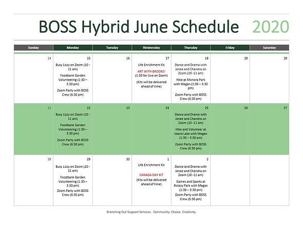 Hybrid Programming June Schedule_1.jpg