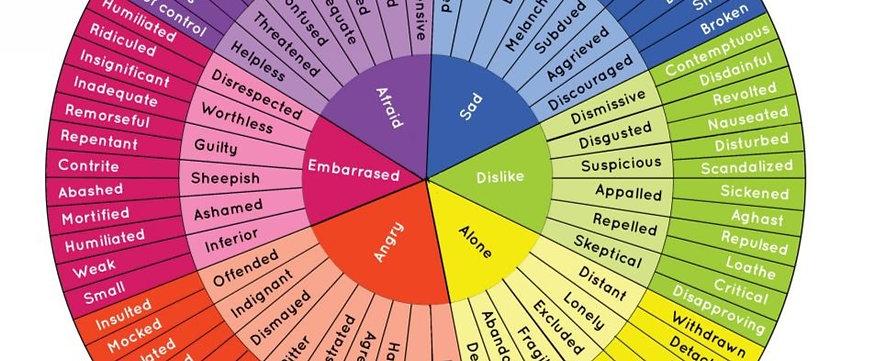 Feelings Wheel- Positive and Negative Emotions