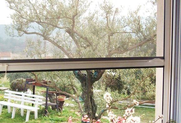 Moustiquaire enroulable fenêtre