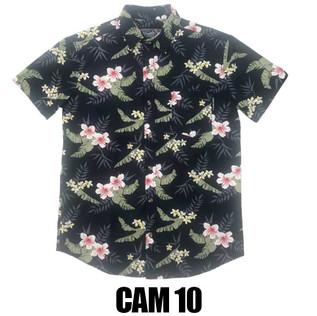 CAMISA M CORTA 100% ALGODÓN